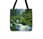 Lower Proxy Falls Tote Bag
