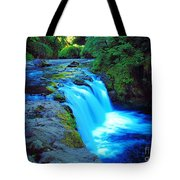 Lower Punchbowl Falls Tote Bag
