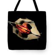 Lr 001 Tote Bag