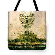 Lucca Fountain Tote Bag