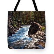 Lucia Falls Downstream Tote Bag