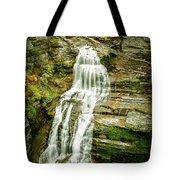 Lucifer Falls Treman Park Tote Bag