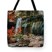 Ludlowville Falls Tote Bag