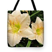 Lullaby Baby Daylilies Tote Bag