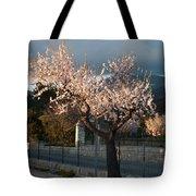 Luminous Almond Tree Tote Bag