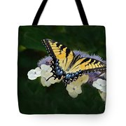 Luminous Butterfly On Lacecap Hydrangea Tote Bag