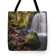 Lumsdale Falls 2.0 Tote Bag