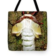Luna Moth Actias Luna Tote Bag