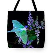 Luna Moth Astilby Flower Black Tote Bag