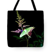 Luna Moth Astilby Flower  Tote Bag