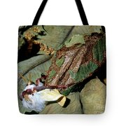 Luna Moth Emerging From Cocoon Tote Bag