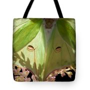 Luna Moth Faux Eyes Tote Bag