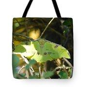 Luna Moth In The Sun Tote Bag