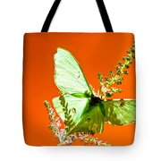 Luna Moth On Astilby Orange Back Ground Tote Bag
