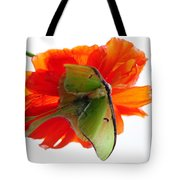 Luna Moth Poppy High Key Tote Bag