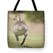 Lunch On The Run Tote Bag