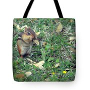 Lunch Time Photo B Tote Bag