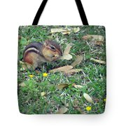 Lunch Time Photo E Tote Bag