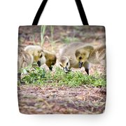 Lunchtime Explorations  Tote Bag