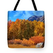 Lundy's Fall Show Tote Bag