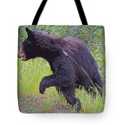 Lunging Black Bear Near Road In Grand Teton National Park-wyoming   Tote Bag