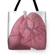 Lungs And Bronchi Tote Bag