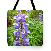 Lupine Along Trail To Rancheria Falls In Yk-canada   Tote Bag