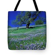 Lupine And The Leaning Tree Tote Bag