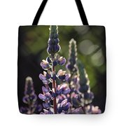 Lupine At The Gate Tote Bag