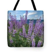 Lupine Blooms Of Bald Hills Tote Bag