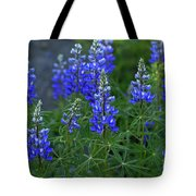 Lupine Family Tote Bag