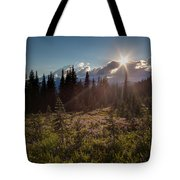 Lupine Field Sunstar Tote Bag