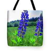 Lupine Flower Tote Bag