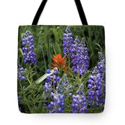 Lupine With Paintbrush 2 Tote Bag