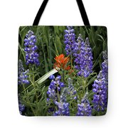 Lupine With Paintbrush Tote Bag