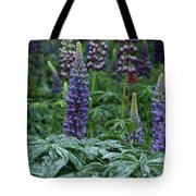 Lupines In The Rain Tote Bag
