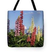 Lupinus Flowers Hokkaido Japan Tote Bag