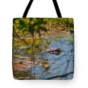 Lurking Gator Tote Bag