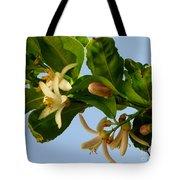 Luscious Lemon Promise Tote Bag