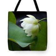 Luscious Lotus Tote Bag