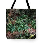 Lush Ferns Of The Forest Tote Bag