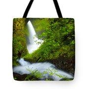 Lush Gorge Falls Tote Bag