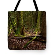 Lush Green Forest Tote Bag