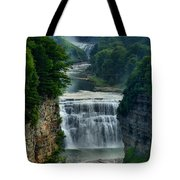 Lush Letchworth Inspiration Point Tote Bag