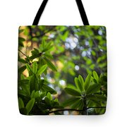 Lush Rhododendron Forest Tote Bag