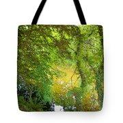 Luss Waters Tote Bag