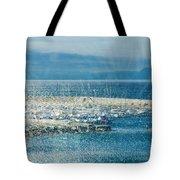 Lyme Regis Under Glass Tote Bag
