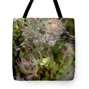 Lynx Spider And Young Tote Bag