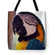 Macaw Head Study Tote Bag