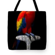 Macaw... Tote Bag
